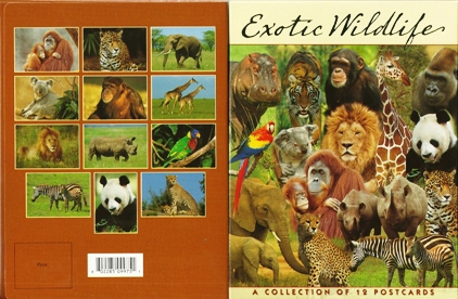 Exotic Wildlife A collection of twelve Prints Postcard Packet