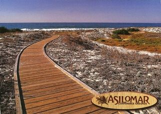 33x Postcard of Asilomar Conference Ground Boardwalk Path