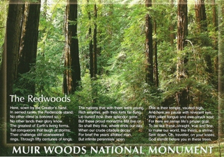 32x Postcard of Muir Woods National Monument with Poem.