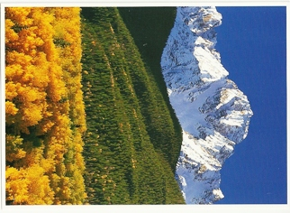 22x Postcard of Mount Sneffels Colorado