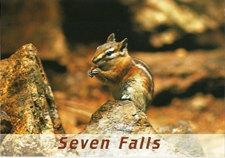 17x Postcard of Seven Falls Chipmunk (Eutamias minimus)