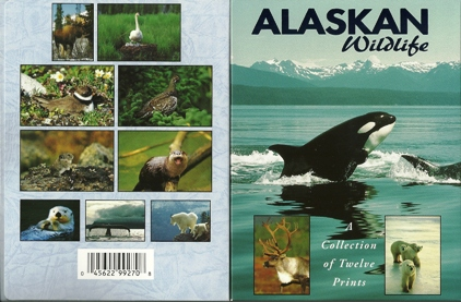 2x ALASKAN WILDLIFE A collection of twelve Prints, Postcard Pack