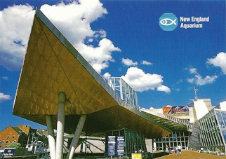 22X Postcard of New England Aquarium