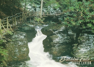 "24x Postcard Upper Canyon BUSHKILL FALLS ""The Niagara of Pennsyl"