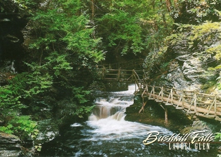 "18x Postcard Laurel Glen BUSHKILL FALLS ""The Niagara of Pennsylv"
