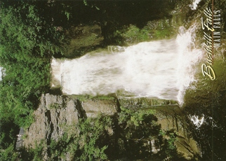 "20x Postcard Main Falls BUSHKILL FALLS ""The Niagara of Pennsylva"