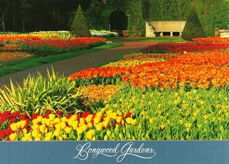 29x Postcard the Flower Garden Walk Longwood Gardens