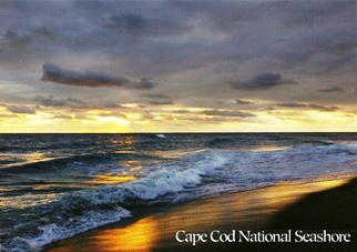 28x POSTCARD OF CAPE COD NATIONAL SEASHORE