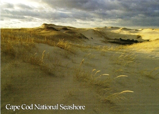 42x Postcard The dunes of Cape Cod CAPE COD NATIONAL SEASHORE