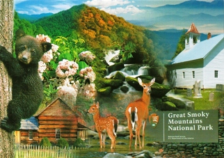 28x Postcard Of Great Smoky Mountains National Park