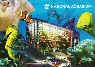 20x Postcard Of NATIONAL AQUARIUM