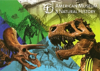 27x Postcard Of AMERICAN MUSEUM OF NATIONAL HISTORY