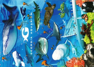 23X Postcard Of Georgia Aquarium in Atlanta, Georgia