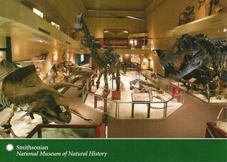 17x Postcard Of Dinosaur Skeletons Smithsonian Institution