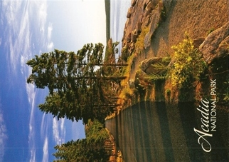 29x Postcard Of The ocean section of Park Loop Road Acadia Natio