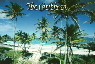 14 x Postcard Of  The Caribbean (Beach).