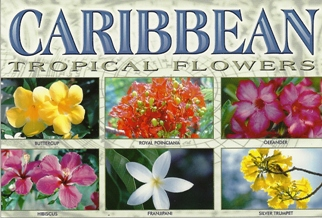 11x Postcard Of TROPICAL FLOWERS From The Caribbean.