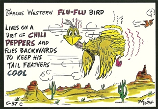 9X Postcard of Famous Western Flu-Flu Bird