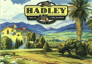 14x Postcard of Hadley Fruit Orchards