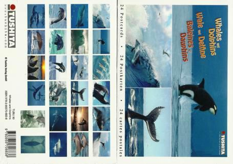 A Book of 24 Postcards Whales and Dolphins