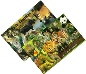 2 Beautiful Postcard Books at one Low price Limited time Offer